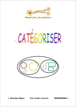 categoriser