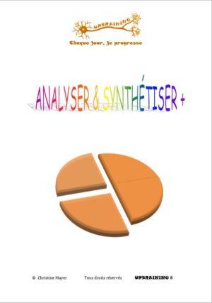 analyser&synthetiser+